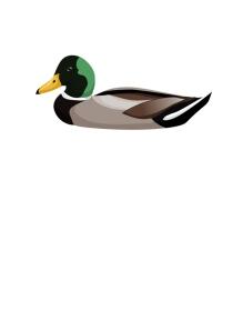 duckprint